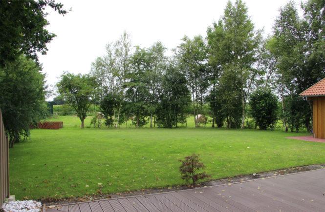 Monatsrückblick Juli 2017 - Blick in den Garten